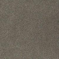 Stainmaster Pet Protect Carpet from Tuftex | Carpet ...