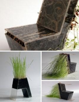 giardini in casa sedia in plastica trasparente dove rimangono visibili terra e radici delle piante che sono al suo interno