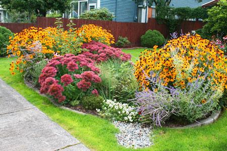 Rain Garden, i giardini della pioggia