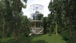 treeinthehouse