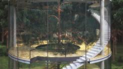 Tree in the House, la casa sull'albero di Aibek Almasov