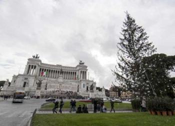 Albero Natale 2017 a Roma, Spelacchio diventa una casetta per bambini