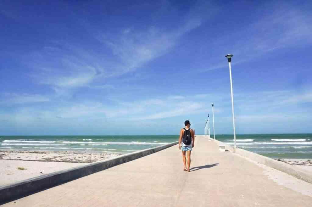 Survival tips for vacationing in El Cuyo Yucatan - Pollo