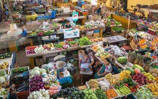 Mercado de Valladolid, El Mercado de Valladolid, una experiencia imperdible., Casas en Valladolid