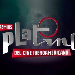platino-segundo-enfoque (1)