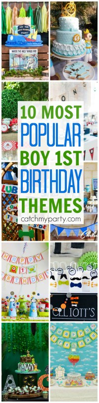 10 Most Popular Boy 1st Birthday Party Themes | Catch My Party