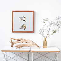 Seagulls - Coastal photography fine art prints by Cattie Coyle Photography