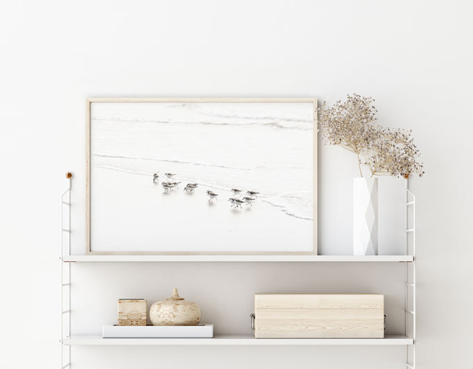 Sandpipers No 6 - Shore birds art print by Cattie Coyle Photography