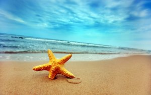 summer-at-lonely-beach-1440x90011