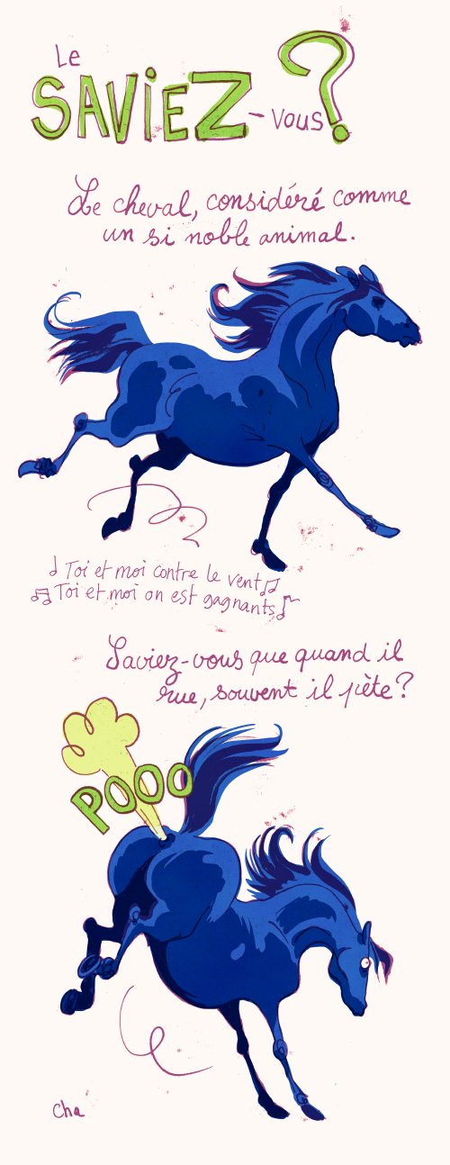 Le cheval, noble animal