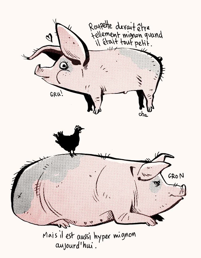Roupette cochon mignon