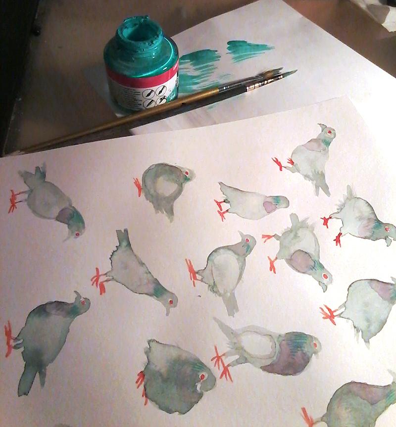 Aquarelle pigeon