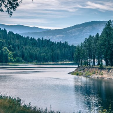 Outdoor view of lake and trees