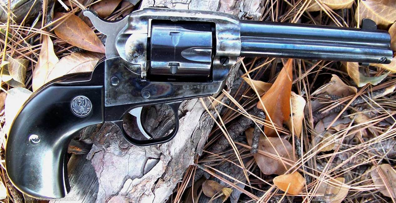 Darl metal Ruger Single Six variant in .32 H and R Magnum on a background of leaves