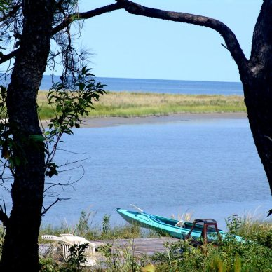 Picture of a bright blue like through 2 trees in the foreground with a kayak tired up at the lake's edge.