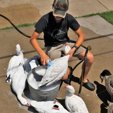 boy washing waterfowl decoys
