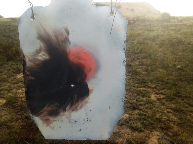 Metal target hit with a .50 BMG round