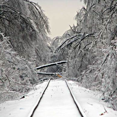 Picture shows a snow-covered train track with a fallen tree in the middle.
