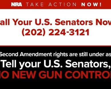 Call Your Senators call to action
