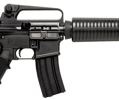 Picture shows a black, fixed stock AR-15 A2 style rifle with fixed carry handle and carbine length handguard.