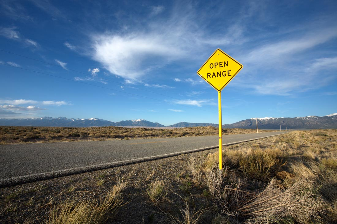 "Picture shows an open concrete road through a plain, a blue sky with whispy clouds and a sign that reads, ""open road."""