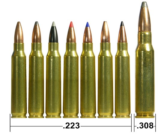 8 .223 gold cartridges with copper tips