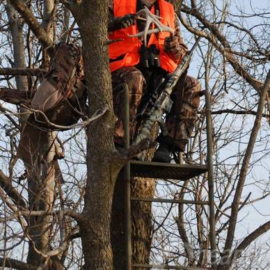 Hunter in a Treestand
