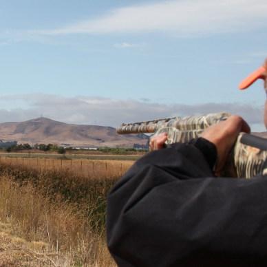 Man holding a camo shotgun in the field