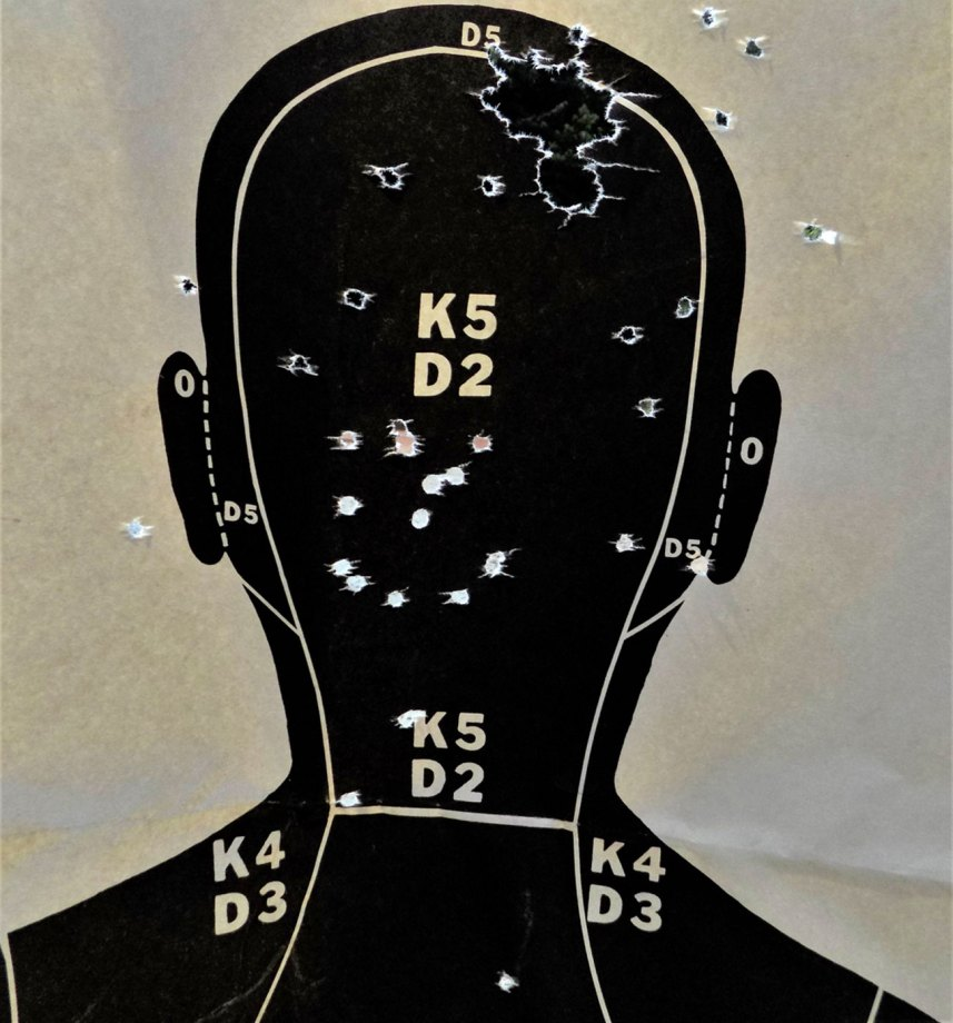 Silhouette target with two loads of Hornady Varmint Express through it