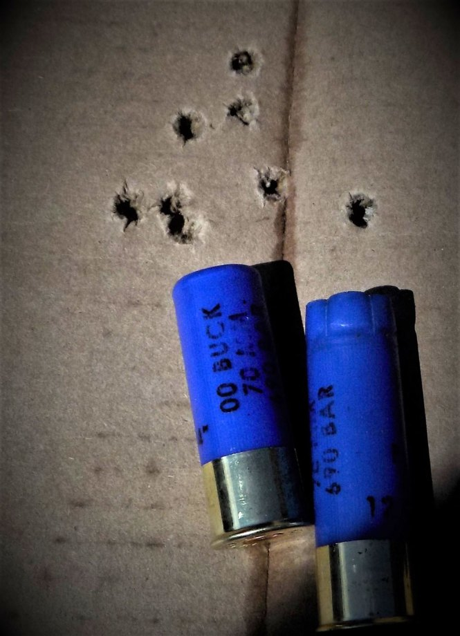 Hornady American Gunner shotgun load through a cardboard target