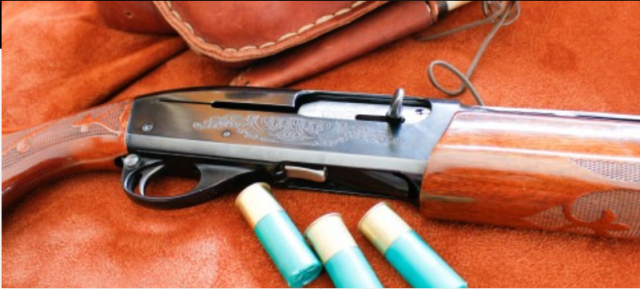 Remington 1100 shotgun with 3 shotgun shells