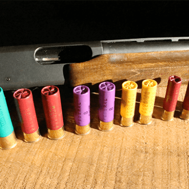 Shotgun with shotshells ranging from 12 gauge to .410