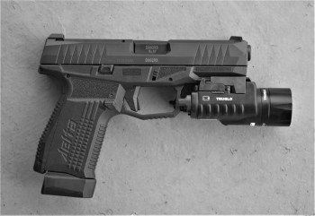 Arex Delta pistol with TruGlo combat light attached to the front dust cover
