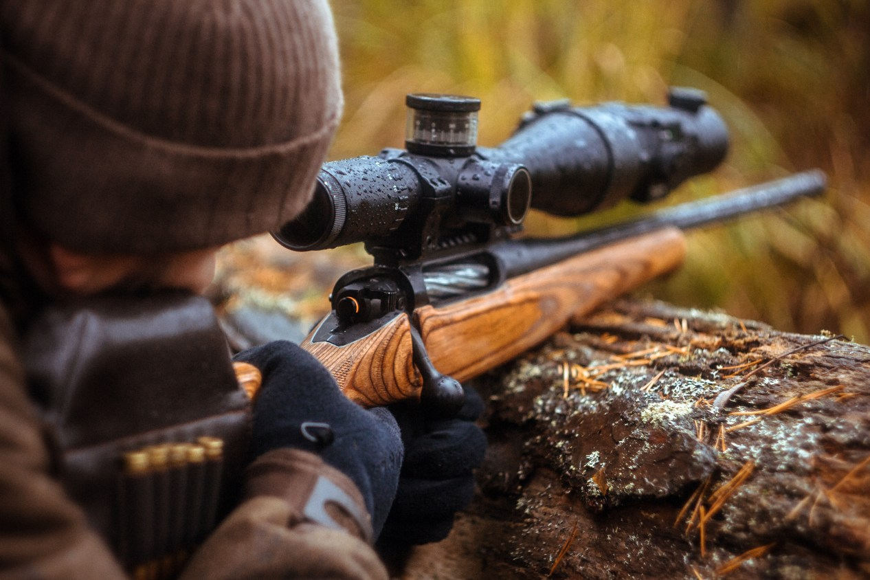 a rifle with a telescopic sight. hunting in the forest