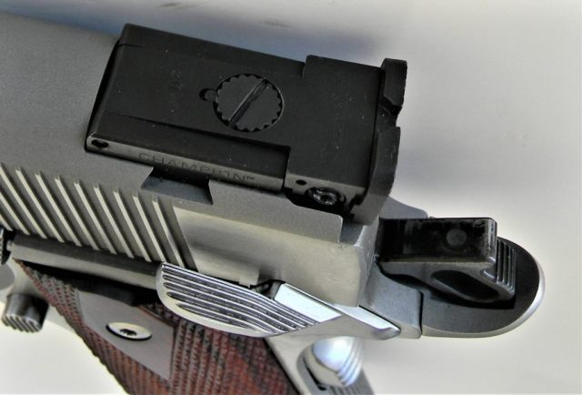 Dan Wesson 1911 Adjustable Sights