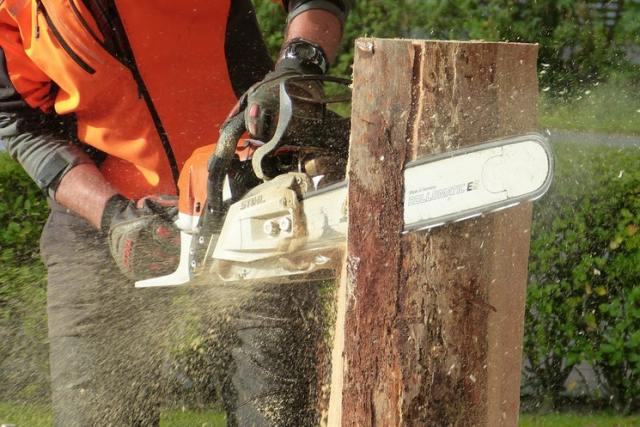 man carving wood with chainsaw hobbies