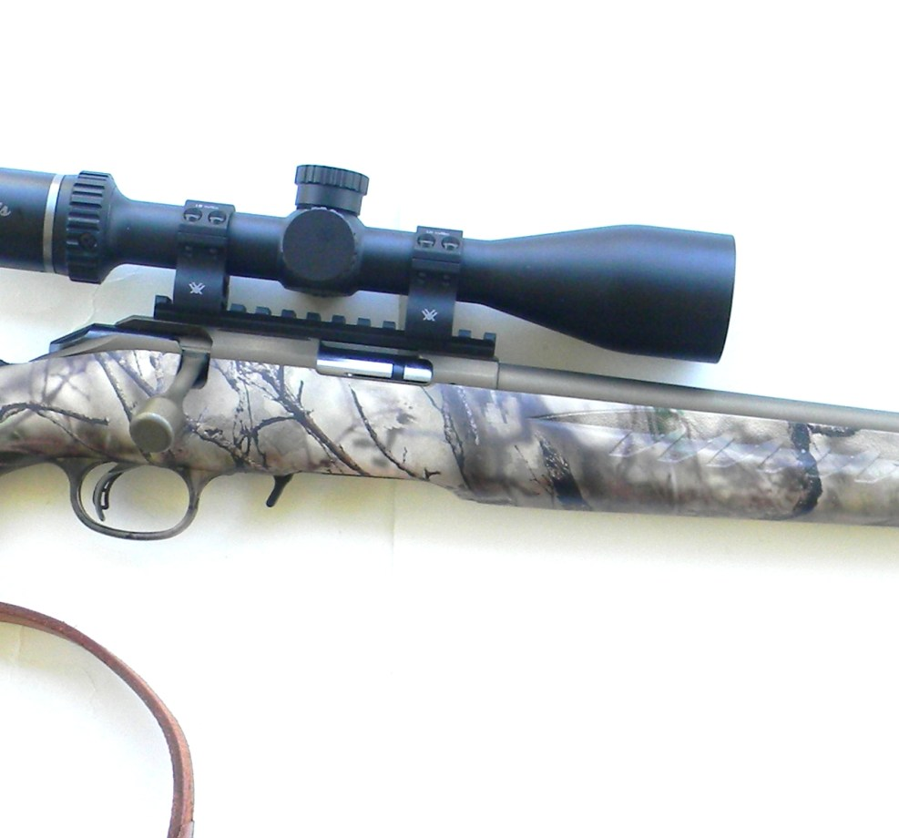 Ruger American Rimfire Rifle