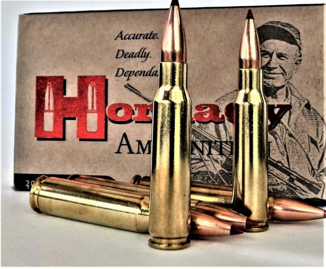 .223 Remington Hornady Ammo and Box