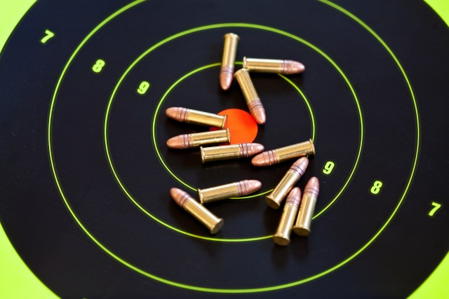 .22 LR caliber ammo and target