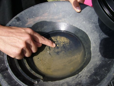 Pan avec paillettes d'or