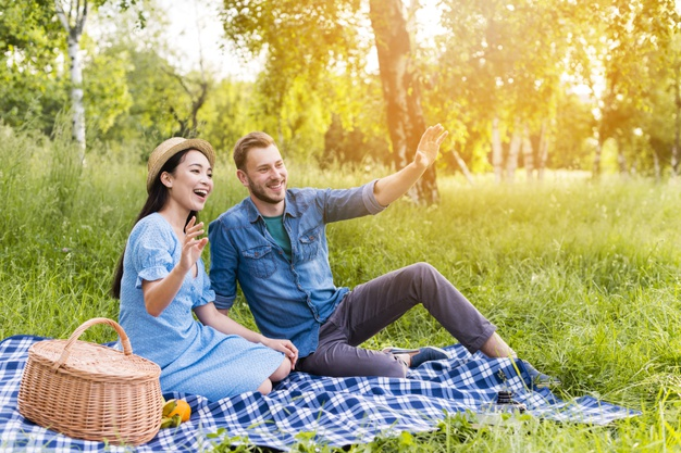Explore these 10 Amazing Ideas to Celebrate Your Wedding Anniversary the Perfect Way-go on a picnic