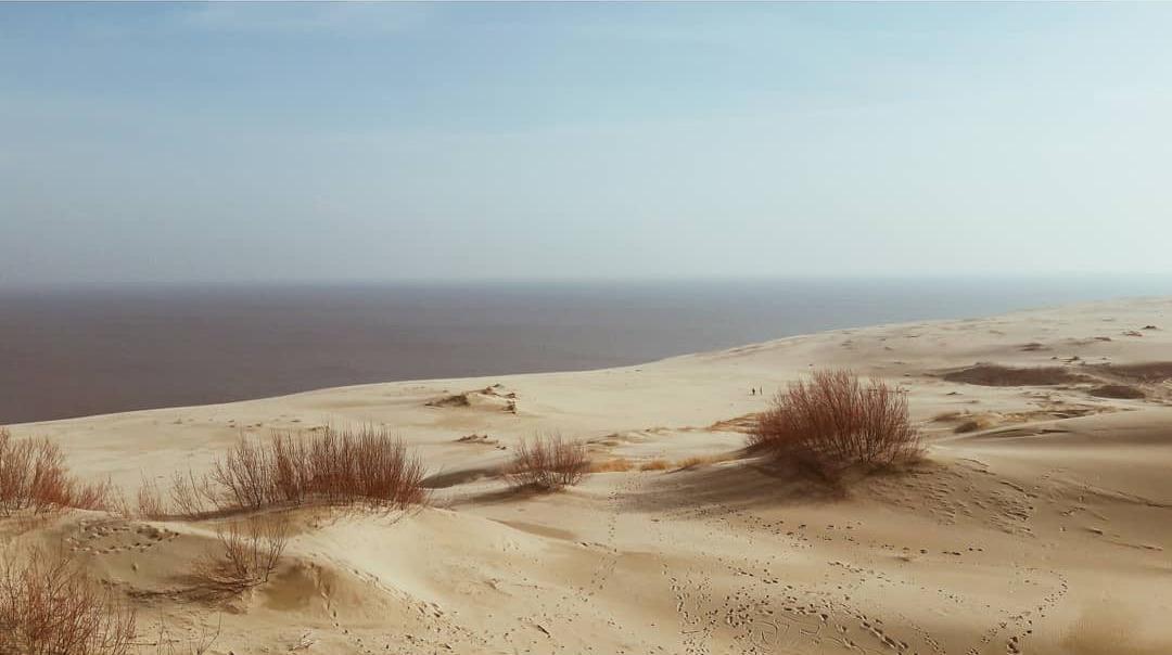 Alexander Shevchenko sand beach dunes calming images