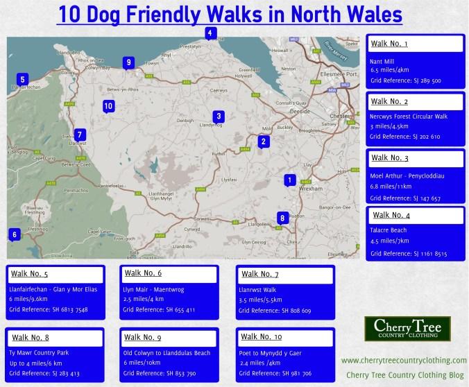 10 dog friendly walks in north wales