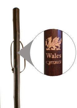 Hiking Staff - Wales Dragon