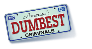 america-dumbest-criminals