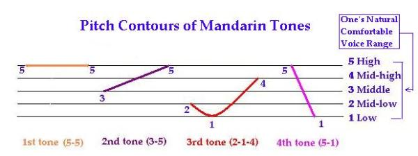 Pitch Contours of Mandarin Tones