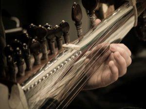 sarod playing, showing fingernails pressing strings
