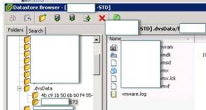 fileInDVSdata