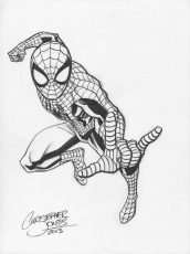 1 Character - Spider-man