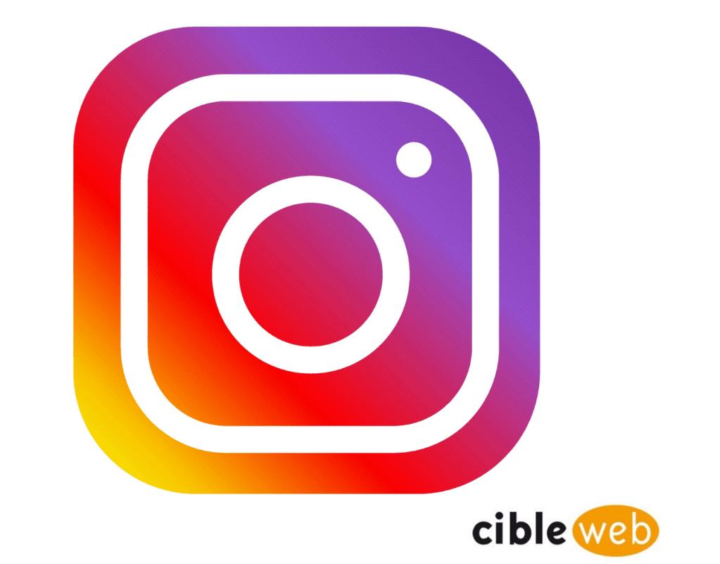 Article Instagram